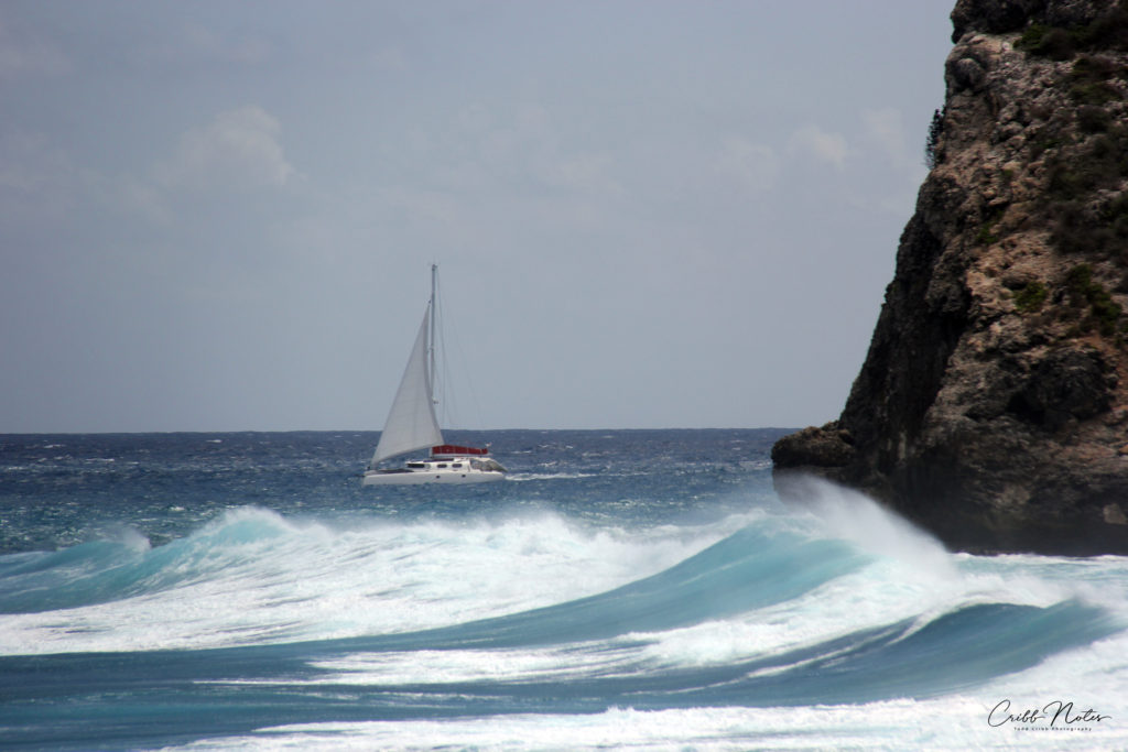 guadeloupe_surf-CN-half-1024x683.jpg